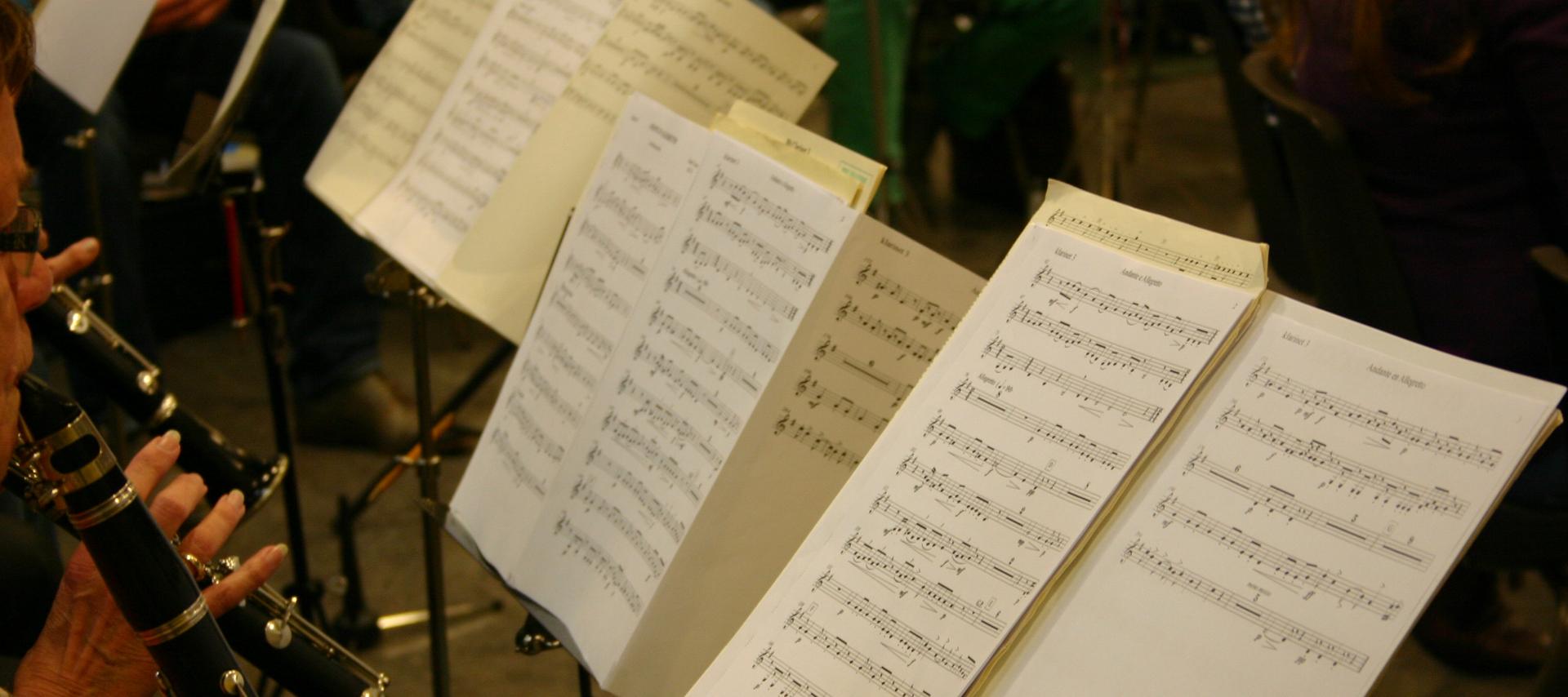 voor muzikale bezigheden